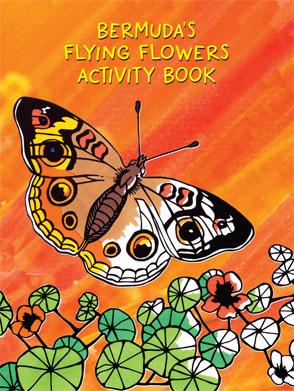 activity_flying
